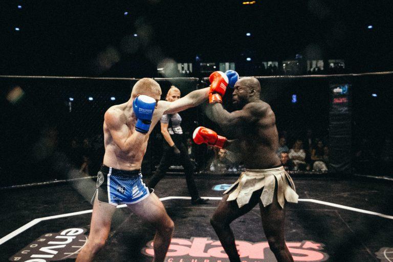 envio fight night 19-2